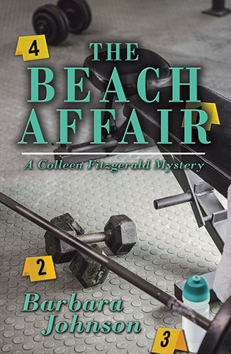 The Beach Affair by Barbara Johnson