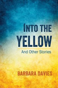 Into the Yellow by Barbara Davies
