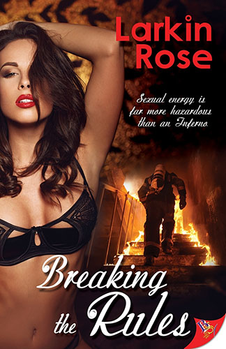 Breaking the Rules by Larkin Rose