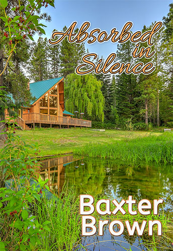 Absorbed in Silence by Baxter Brown